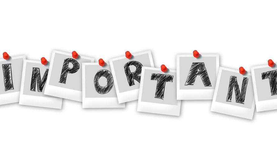 How Important are Autoresponders to Internet Marketing?
